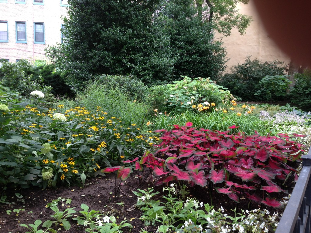Kahn Park garden.